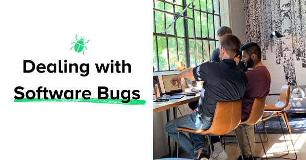 what's a software bug?